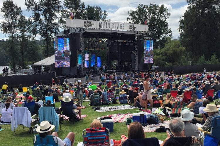 Crowds watching performers during the Blues + Roots Festival at the Deer Lake lawn